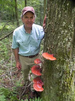 Bob Blanchette and Ganoderma