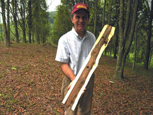 Robert Blanchette with cultivated agarwood
